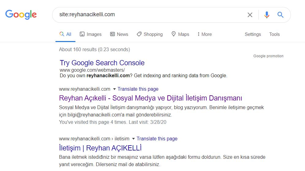 Google dizin kontrolü reyhanacikelli.com